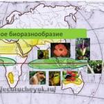 Биоразнообразие на экваторе