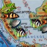 островСуматра